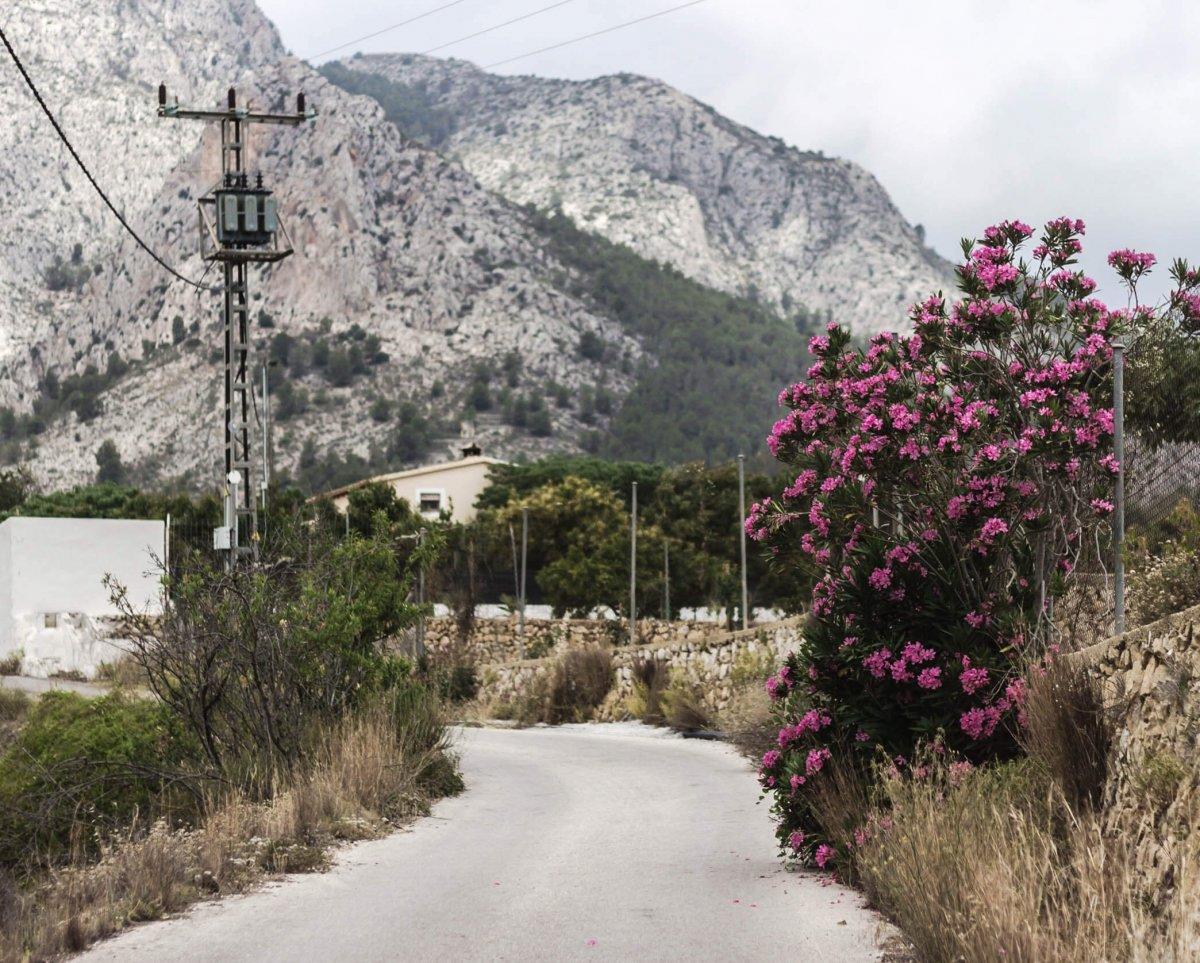 7 x waarom je ooit op vakantie naar Mallorca zou moeten