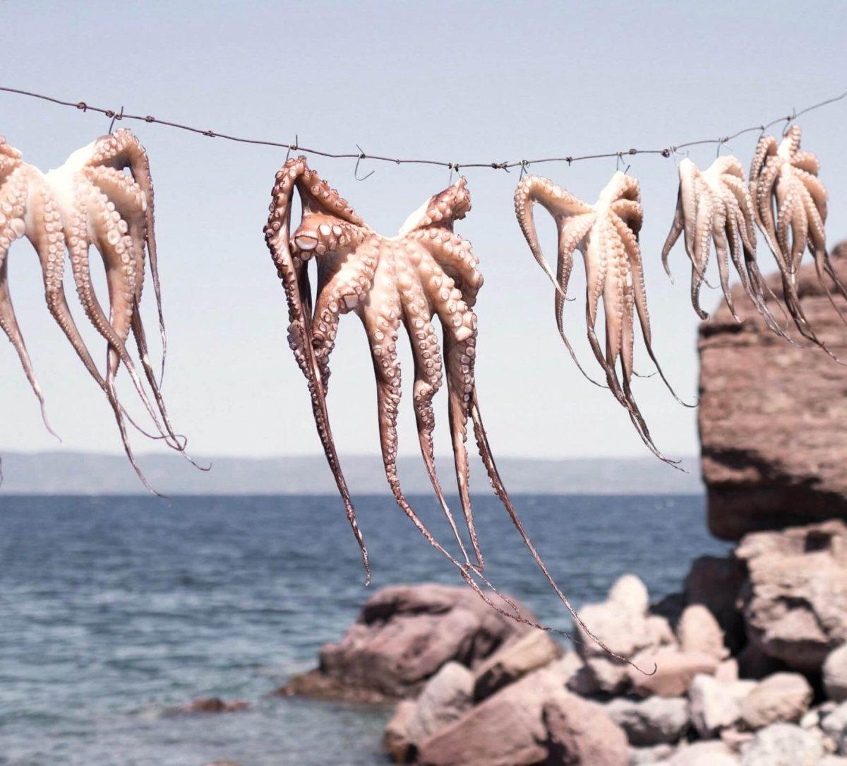 7 opmerkelijke dingen tijdens mijn verblijf op Lesbos